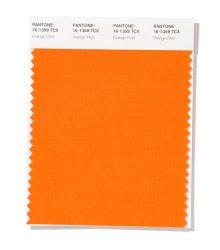 نارنجی پوست پرتغالی (Pantone 16-1359 Orange Peel)
