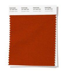 دارچینی (Pantone 18-1345 Cinnamon Stick)